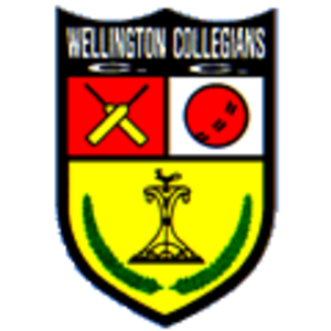 Collegians AGM, Mon 27 August 2018 7:00pm, Anderson Park Clubrooms